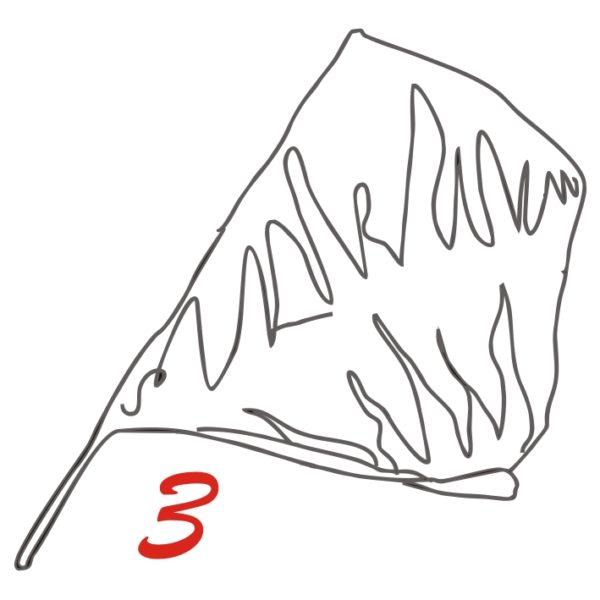 disegno giochi delle bandiere sbandieratore